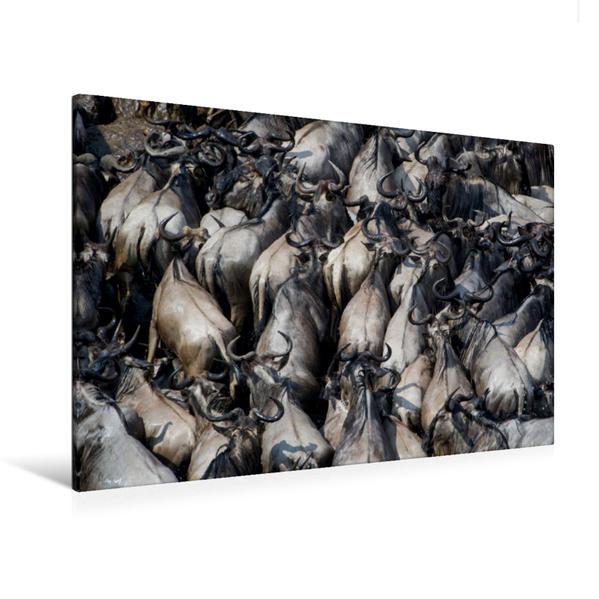 Premium Textil-Leinwand 120 cm x 80 cm quer, Ein Motiv aus dem Kalender Emotionale Momente: Die große Gnuwanderung | Wandbild, Bild auf Keilrahmen, Fertigbild auf echter Leinwand, Leinwanddruck - Coverbild