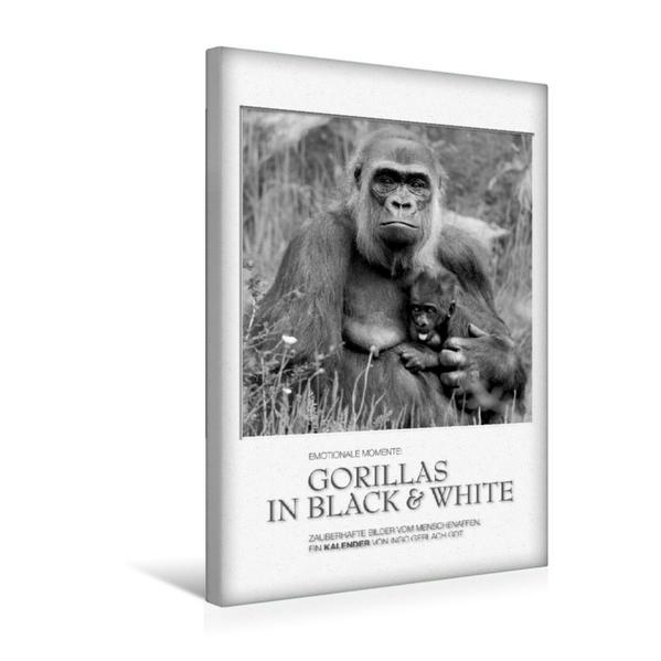 Premium Textil-Leinwand 30 cm x 45 cm hoch, Ein Motiv aus dem Kalender Emotionale Momente: Gorillas in black & white / CH-Version | Wandbild, Bild auf Keilrahmen, Fertigbild auf echter Leinwand, Leinwanddruck - Coverbild