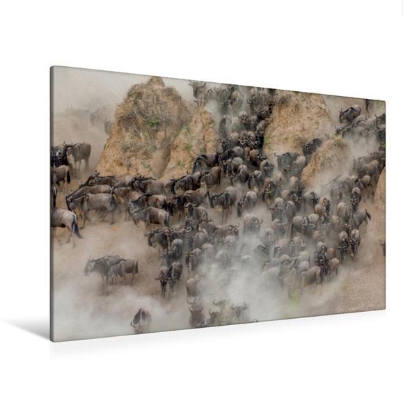 Premium Textil-Leinwand 120 cm x 80 cm quer, Gnus   Wandbild, Bild auf Keilrahmen, Fertigbild auf echter Leinwand, Leinwanddruck - Coverbild