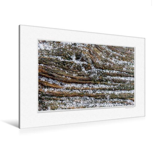 Premium Textil-Leinwand 120 cm x 80 cm quer, Ein Motiv aus dem Kalender Emotionale Momente: Holz ist Leben. Part II. / CH-Version | Wandbild, Bild auf Keilrahmen, Fertigbild auf echter Leinwand, Leinwanddruck - Coverbild