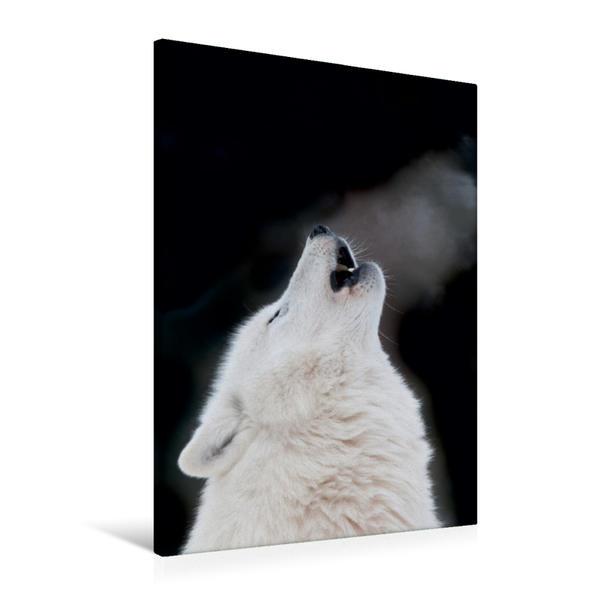 Premium Textil-Leinwand 60 cm x 90 cm hoch, Ein Motiv aus dem Kalender Emotionale Momente: Der Wolf. | Wandbild, Bild auf Keilrahmen, Fertigbild auf echter Leinwand, Leinwanddruck - Coverbild