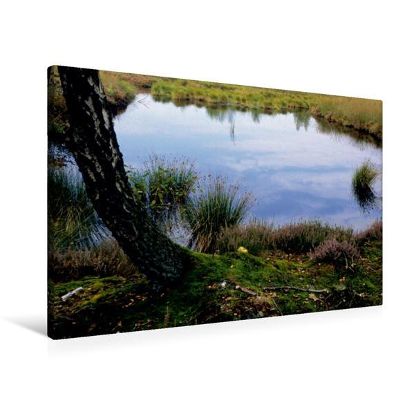 Premium Textil-Leinwand 90 cm x 60 cm quer, Ein Motiv aus dem Kalender Zauberhaftes Moor | Wandbild, Bild auf Keilrahmen, Fertigbild auf echter Leinwand, Leinwanddruck - Coverbild