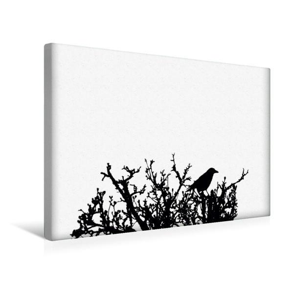 Premium Textil-Leinwand 45 cm x 30 cm quer, Deutsches Sprichwort - Weiße Raben | Wandbild, Bild auf Keilrahmen, Fertigbild auf echter Leinwand, Leinwanddruck - Coverbild