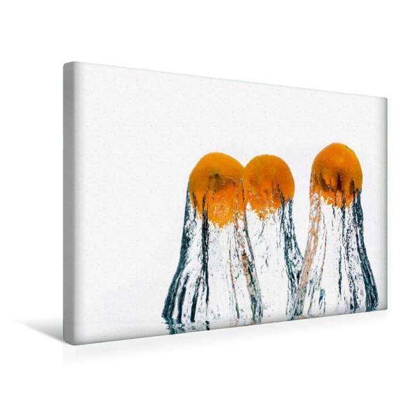 Premium Textil-Leinwand 45 cm x 30 cm quer, Nektarinen | Wandbild, Bild auf Keilrahmen, Fertigbild auf echter Leinwand, Leinwanddruck - Coverbild