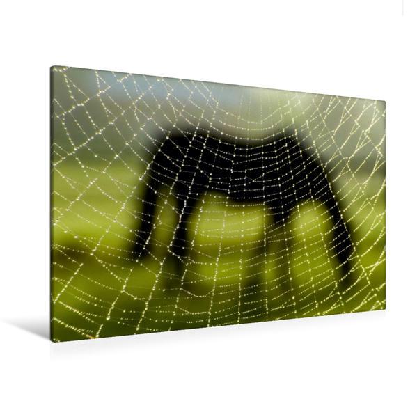 Premium Textil-Leinwand 120 cm x 80 cm quer, Pferdewelt in der Gemeinde Rosengarten | Wandbild, Bild auf Keilrahmen, Fertigbild auf echter Leinwand, Leinwanddruck - Coverbild