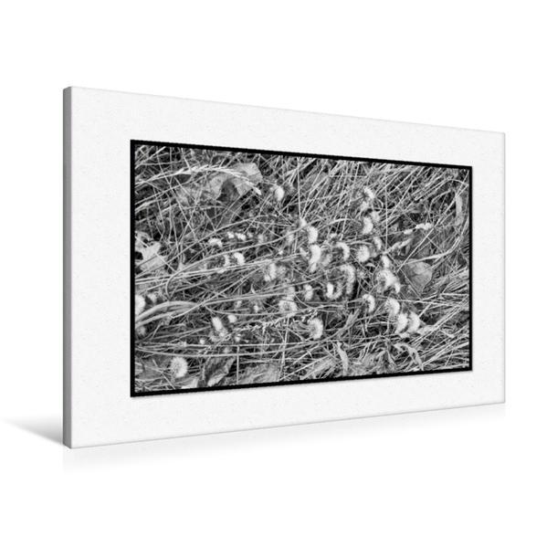 Premium Textil-Leinwand 90 cm x 60 cm quer, Ein Motiv aus dem Kalender Emotionale Momente: Black & White Fineart - das Heu. / AT-Version   Wandbild, Bild auf Keilrahmen, Fertigbild auf echter Leinwand, Leinwanddruck - Coverbild