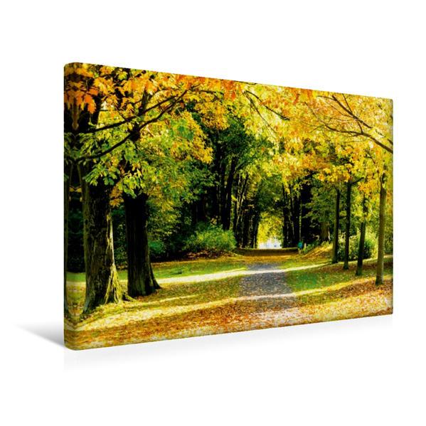 Premium Textil-Leinwand 45 cm x 30 cm quer, Herbstlicher Park | Wandbild, Bild auf Keilrahmen, Fertigbild auf echter Leinwand, Leinwanddruck - Coverbild