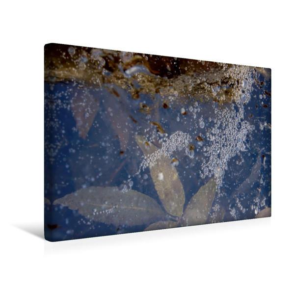 Premium Textil-Leinwand 45 cm x 30 cm quer, Blätter im Eis   Wandbild, Bild auf Keilrahmen, Fertigbild auf echter Leinwand, Leinwanddruck - Coverbild