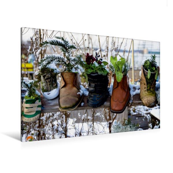 Premium Textil-Leinwand 120 cm x 80 cm quer, Bepflanzte Schuhe | Wandbild, Bild auf Keilrahmen, Fertigbild auf echter Leinwand, Leinwanddruck - Coverbild