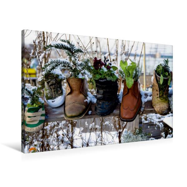 Premium Textil-Leinwand 90 cm x 60 cm quer, Bepflanzte Schuhe | Wandbild, Bild auf Keilrahmen, Fertigbild auf echter Leinwand, Leinwanddruck - Coverbild