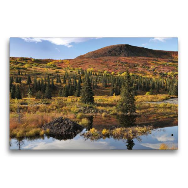 Premium Textil-Leinwand 75 cm x 50 cm quer, Biberburg am Hatcher Pass | Wandbild, Bild auf Keilrahmen, Fertigbild auf echter Leinwand, Leinwanddruck - Coverbild