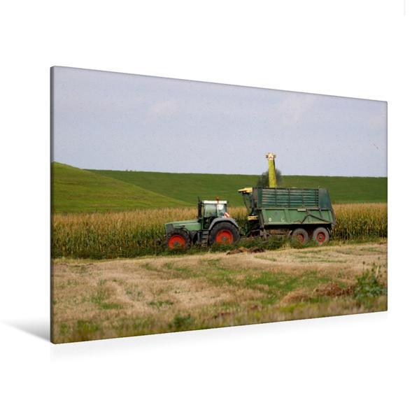 Premium Textil-Leinwand 120 cm x 80 cm quer, Maisernte | Wandbild, Bild auf Keilrahmen, Fertigbild auf echter Leinwand, Leinwanddruck - Coverbild