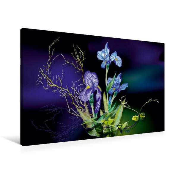 Premium Textil-Leinwand 90 cm x 60 cm quer, Irise | Wandbild, Bild auf Keilrahmen, Fertigbild auf echter Leinwand, Leinwanddruck - Coverbild