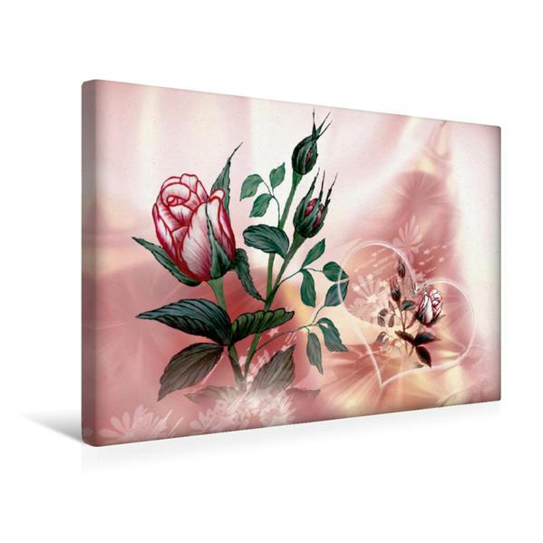 Premium Textil-Leinwand 45 cm x 30 cm quer, Rose | Wandbild, Bild auf Keilrahmen, Fertigbild auf echter Leinwand, Leinwanddruck - Coverbild
