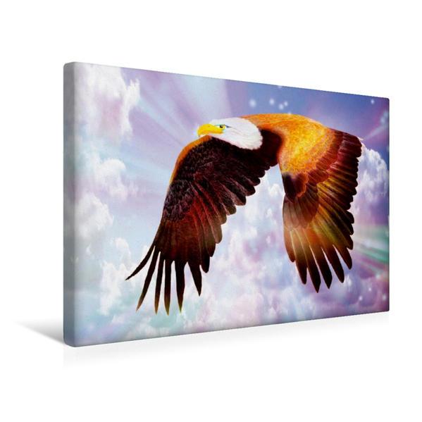 Premium Textil-Leinwand 45 cm x 30 cm quer, Adler   Wandbild, Bild auf Keilrahmen, Fertigbild auf echter Leinwand, Leinwanddruck - Coverbild