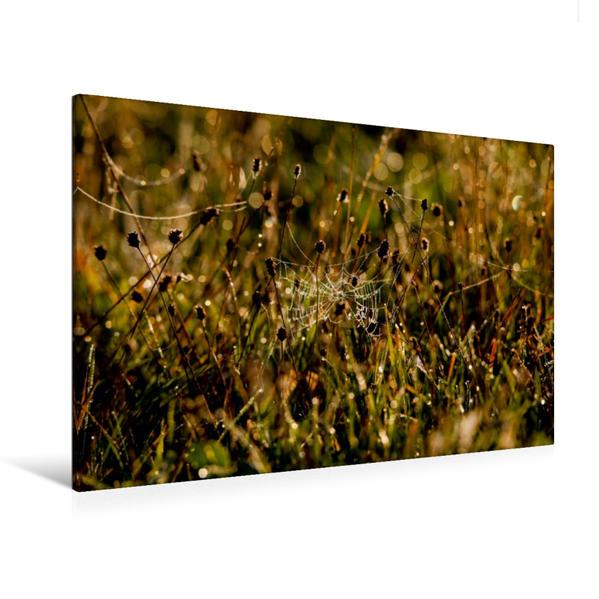 Premium Textil-Leinwand 120 cm x 80 cm quer, Ein Motiv aus dem Kalender Herbstmorgen in der Oberlausitz | Wandbild, Bild auf Keilrahmen, Fertigbild auf echter Leinwand, Leinwanddruck - Coverbild