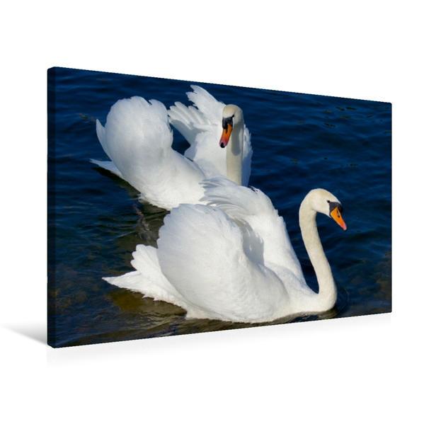 Premium Textil-Leinwand 75 cm x 50 cm quer, Männerfreundschaft | Wandbild, Bild auf Keilrahmen, Fertigbild auf echter Leinwand, Leinwanddruck - Coverbild