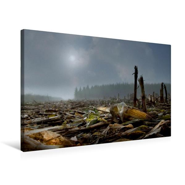 Premium Textil-Leinwand 75 cm x 50 cm quer, abgeerntet (Feld bei Stocka) | Wandbild, Bild auf Keilrahmen, Fertigbild auf echter Leinwand, Leinwanddruck - Coverbild