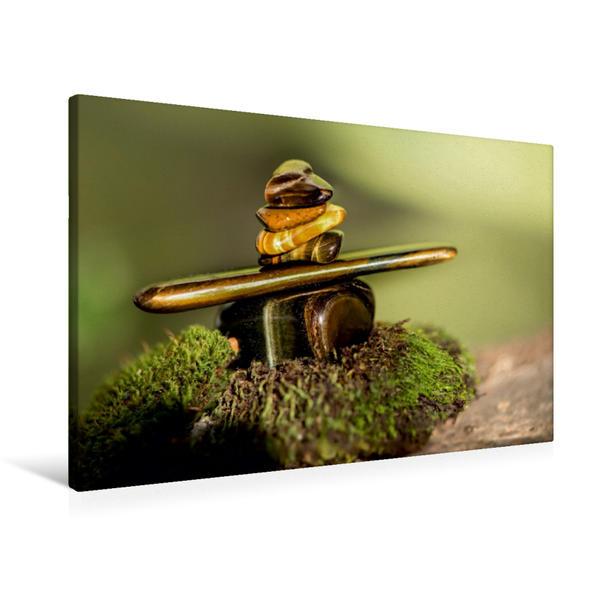 Premium Textil-Leinwand 90 cm x 60 cm quer, Tiegerauge | Wandbild, Bild auf Keilrahmen, Fertigbild auf echter Leinwand, Leinwanddruck - Coverbild