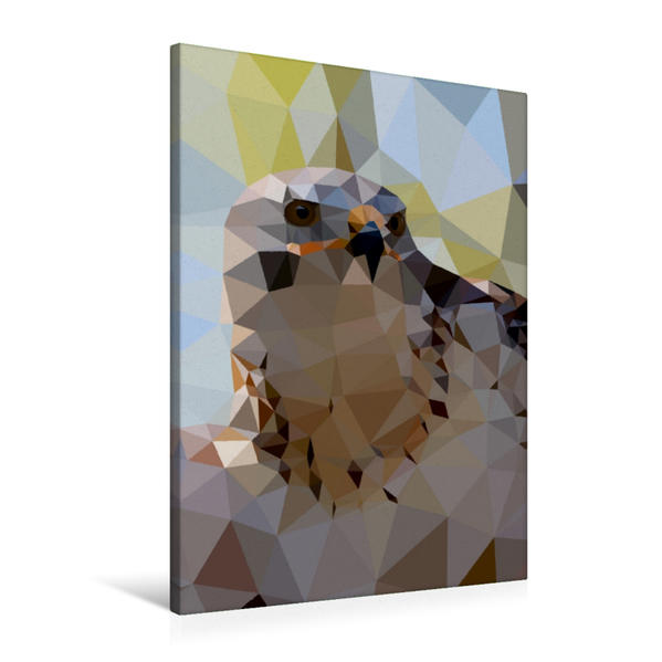 Premium Textil-Leinwand 60 cm x 90 cm hoch, Greifvogel | Wandbild, Bild auf Keilrahmen, Fertigbild auf echter Leinwand, Leinwanddruck - Coverbild