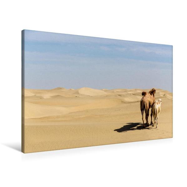 Premium Textil-Leinwand 90 cm x 60 cm quer, Blick in die Ferne | Wandbild, Bild auf Keilrahmen, Fertigbild auf echter Leinwand, Leinwanddruck - Coverbild
