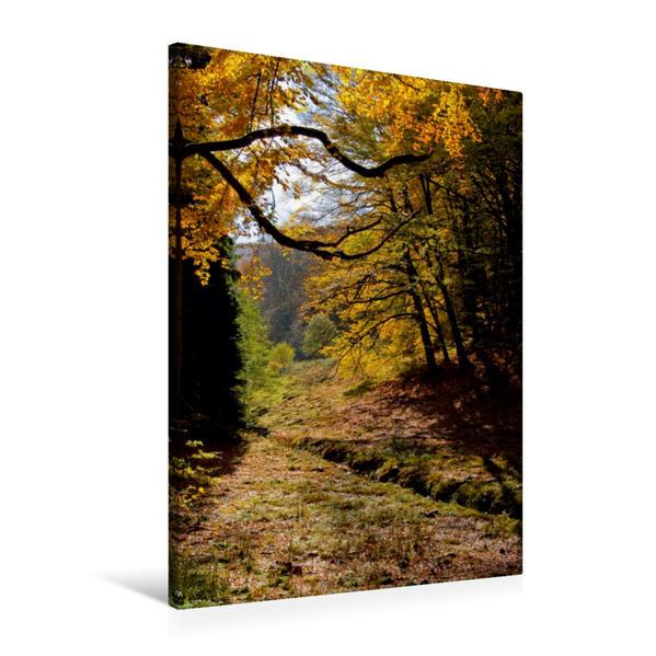Premium Textil-Leinwand 60 cm x 90 cm hoch, Ein Motiv aus dem Kalender Herbsttage im Taunus   Wandbild, Bild auf Keilrahmen, Fertigbild auf echter Leinwand, Leinwanddruck - Coverbild