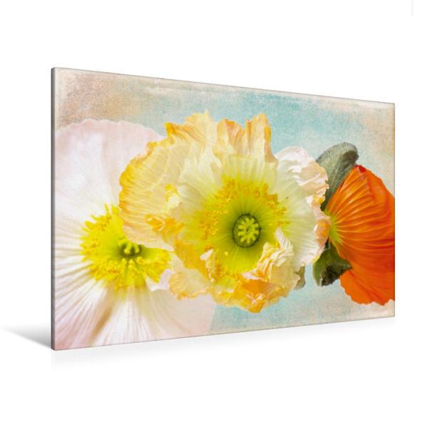 Premium Textil-Leinwand 120 cm x 80 cm quer, Feeling of summer   Wandbild, Bild auf Keilrahmen, Fertigbild auf echter Leinwand, Leinwanddruck - Coverbild