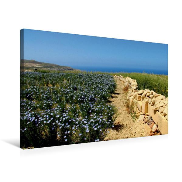 Premium Textil-Leinwand 75 cm x 50 cm quer, Ein Motiv aus dem Kalender WEGE ENTDECKEN | Wandbild, Bild auf Keilrahmen, Fertigbild auf echter Leinwand, Leinwanddruck - Coverbild