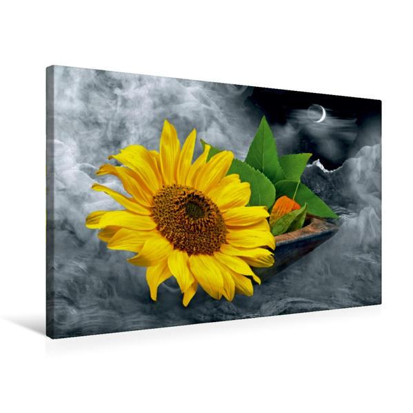 Premium Textil-Leinwand 75 cm x 50 cm quer, Ein Motiv aus dem Kalender Floral | Wandbild, Bild auf Keilrahmen, Fertigbild auf echter Leinwand, Leinwanddruck - Coverbild