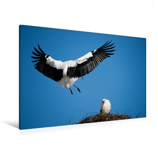 Premium Textil-Leinwand 120 cm x 80 cm quer, Rückkehr | Wandbild, Bild auf Keilrahmen, Fertigbild auf echter Leinwand, Leinwanddruck - Coverbild