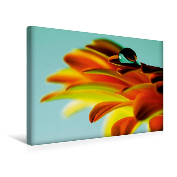 Premium Textil-Leinwand 45 cm x 30 cm quer, Ein Motiv aus dem Kalender Drops | Wandbild, Bild auf Keilrahmen, Fertigbild auf echter Leinwand, Leinwanddruck - Coverbild