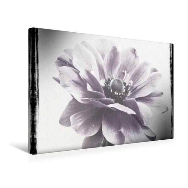 Premium Textil-Leinwand 45 cm x 30 cm quer, Ein Motiv aus dem Kalender Poesie in Schwarz-Weiß   Wandbild, Bild auf Keilrahmen, Fertigbild auf echter Leinwand, Leinwanddruck - Coverbild