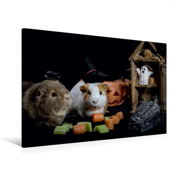 Premium Textil-Leinwand 120 cm x 80 cm quer, Schweinoween | Wandbild, Bild auf Keilrahmen, Fertigbild auf echter Leinwand, Leinwanddruck - Coverbild