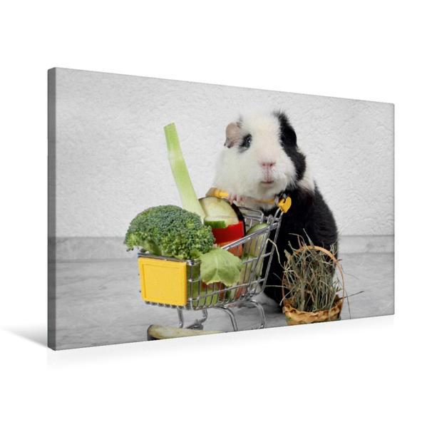 Premium Textil-Leinwand 75 cm x 50 cm quer, Shopping | Wandbild, Bild auf Keilrahmen, Fertigbild auf echter Leinwand, Leinwanddruck - Coverbild