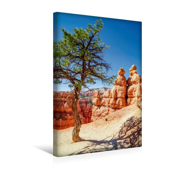 Premium Textil-Leinwand 30 cm x 45 cm hoch, BRYCE CANYON Wanderpfad durch die Felsformationen   Wandbild, Bild auf Keilrahmen, Fertigbild auf echter Leinwand, Leinwanddruck - Coverbild