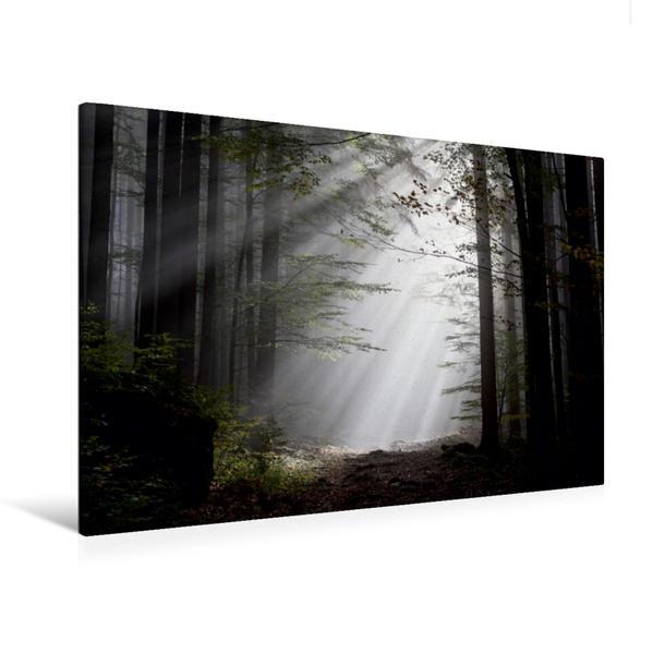 Premium Textil-Leinwand 120 cm x 80 cm quer, Licht und Schatten   Wandbild, Bild auf Keilrahmen, Fertigbild auf echter Leinwand, Leinwanddruck - Coverbild