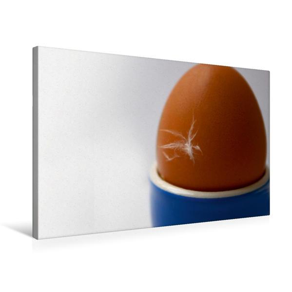 Premium Textil-Leinwand 75 cm x 50 cm quer, Kleines Ei – ganz groß | Wandbild, Bild auf Keilrahmen, Fertigbild auf echter Leinwand, Leinwanddruck - Coverbild