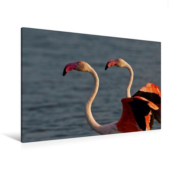 Premium Textil-Leinwand 120 cm x 80 cm quer, Rückblick | Wandbild, Bild auf Keilrahmen, Fertigbild auf echter Leinwand, Leinwanddruck - Coverbild