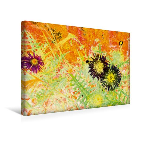 Premium Textil-Leinwand 45 cm x 30 cm quer, Farbdistel - Ein Motiv aus dem Kalender Kunstwerke in Acryl   Wandbild, Bild auf Keilrahmen, Fertigbild auf echter Leinwand, Leinwanddruck - Coverbild