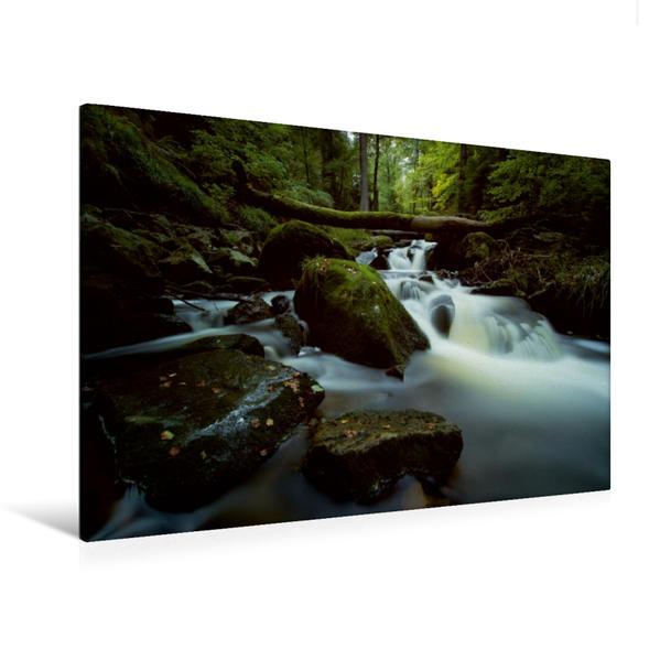 Premium Textil-Leinwand 120 cm x 80 cm quer, Ilse | Wandbild, Bild auf Keilrahmen, Fertigbild auf echter Leinwand, Leinwanddruck - Coverbild