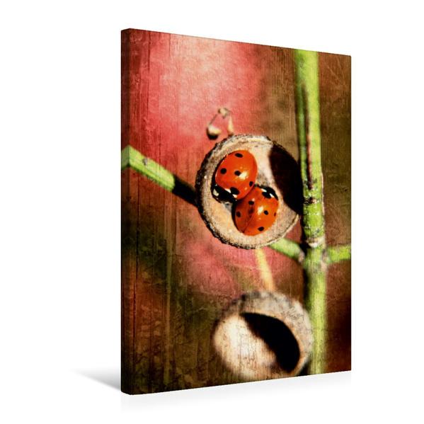 Premium Textil-Leinwand 50 cm x 75 cm hoch, Zimmer für Zwei | Wandbild, Bild auf Keilrahmen, Fertigbild auf echter Leinwand, Leinwanddruck - Coverbild