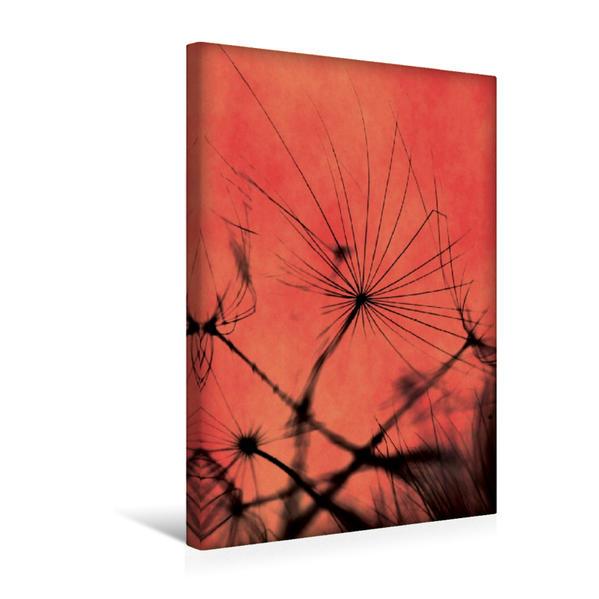 Premium Textil-Leinwand 30 cm x 45 cm hoch, Zeit zu fliegen | Wandbild, Bild auf Keilrahmen, Fertigbild auf echter Leinwand, Leinwanddruck - Coverbild