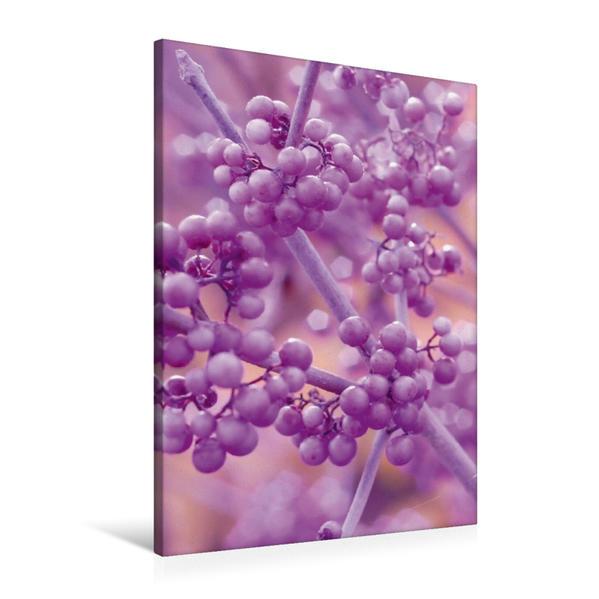 Premium Textil-Leinwand 60 cm x 90 cm hoch, Schönfrucht | Wandbild, Bild auf Keilrahmen, Fertigbild auf echter Leinwand, Leinwanddruck - Coverbild