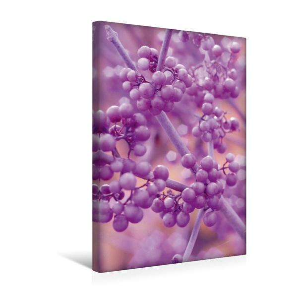 Premium Textil-Leinwand 30 cm x 45 cm hoch, Schönfrucht | Wandbild, Bild auf Keilrahmen, Fertigbild auf echter Leinwand, Leinwanddruck - Coverbild