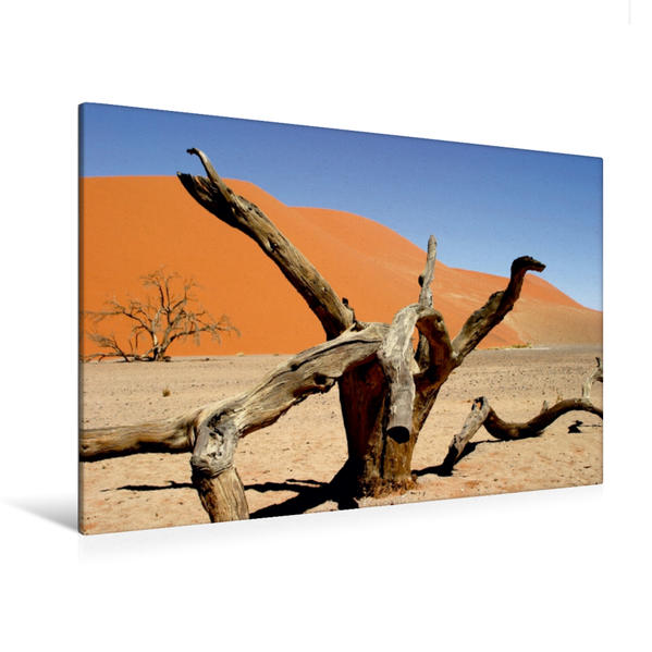 Premium Textil-Leinwand 120 cm x 80 cm quer, Abgestorbener Baum, Sossusvlei, Namibia | Wandbild, Bild auf Keilrahmen, Fertigbild auf echter Leinwand, Leinwanddruck - Coverbild