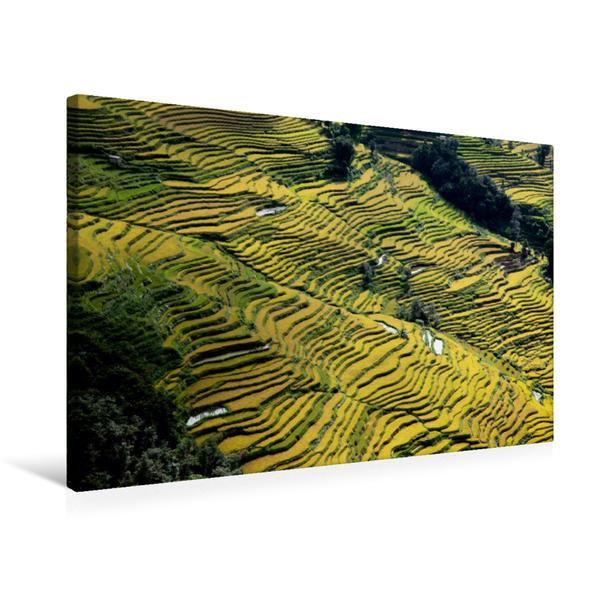Premium Textil-Leinwand 75 cm x 50 cm quer, Reisterrassen von Bada | Wandbild, Bild auf Keilrahmen, Fertigbild auf echter Leinwand, Leinwanddruck - Coverbild