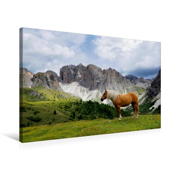 Premium Textil-Leinwand 75 cm x 50 cm quer, Ein Motiv aus dem Kalender Pferde - In natürlicher Umgebung | Wandbild, Bild auf Keilrahmen, Fertigbild auf echter Leinwand, Leinwanddruck - Coverbild