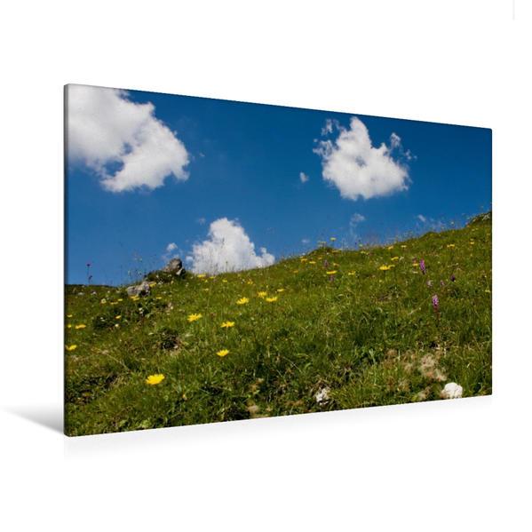 Premium Textil-Leinwand 120 cm x 80 cm quer, Bergwiese | Wandbild, Bild auf Keilrahmen, Fertigbild auf echter Leinwand, Leinwanddruck - Coverbild