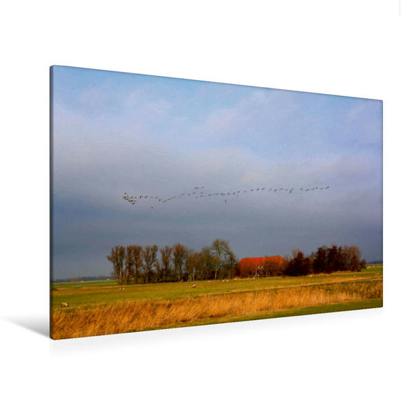 Premium Textil-Leinwand 120 cm x 80 cm quer, Roddens | Wandbild, Bild auf Keilrahmen, Fertigbild auf echter Leinwand, Leinwanddruck - Coverbild