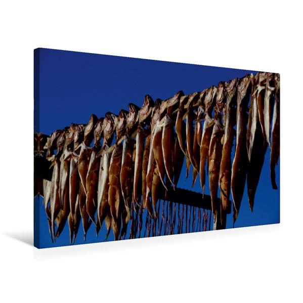 Premium Textil-Leinwand 75 cm x 50 cm quer, Trockenfisch   Wandbild, Bild auf Keilrahmen, Fertigbild auf echter Leinwand, Leinwanddruck - Coverbild
